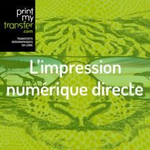 L'impression numérique directe (DTG), c'est quoi ?